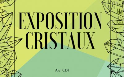 Exposition de cristaux et roches au CDI